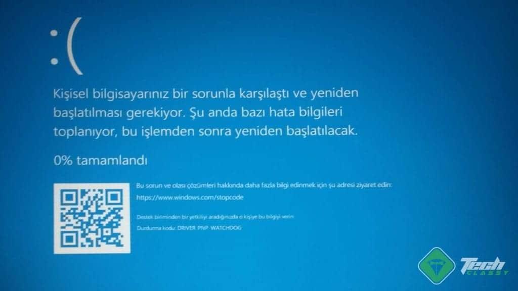 Screenshot Driver PNP Watchdog Error - Blue Screen