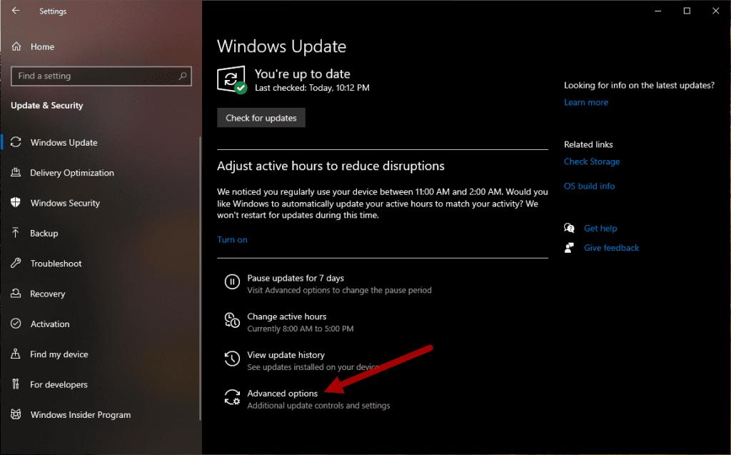 Clicking Advanced Options Windows Update